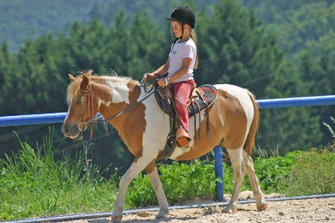 Western Riding Service