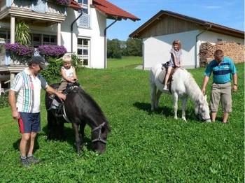 Aktive Landwirtschaft auf dem Ferienbauernhof Kilger
