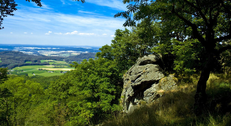 Rhön (Milseburg)