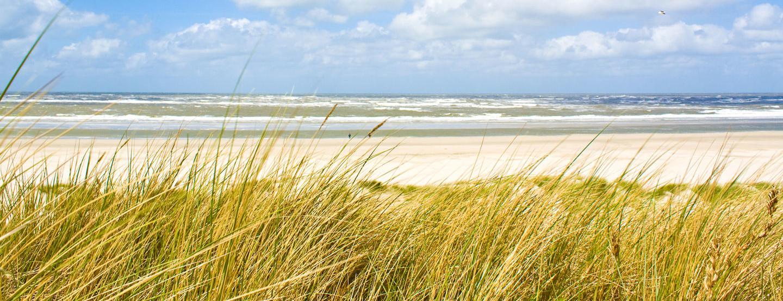 Traumhafter Nordseestrand in Nordfriesland und Nördl. Schleswig-Holstein