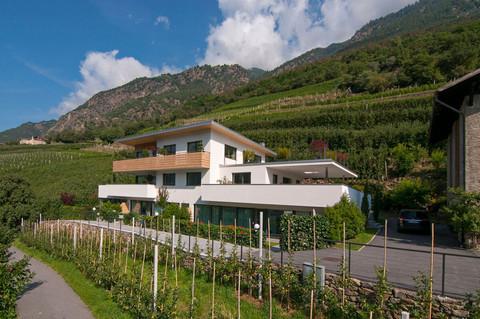 Urlaub auf dem Weinreichof