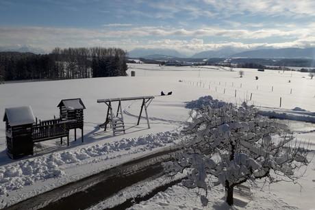 Seele-baumeln-lassen-Angebot: Panoramahof Harmannschlag