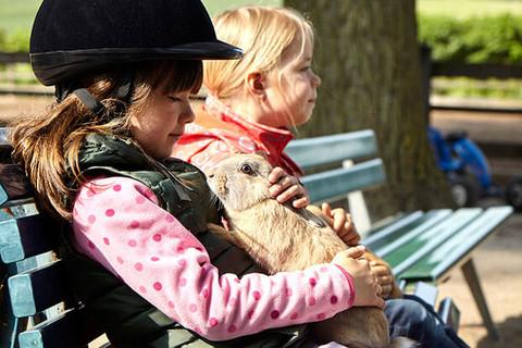 Liebevollen Umgang mit den Tieren lernen