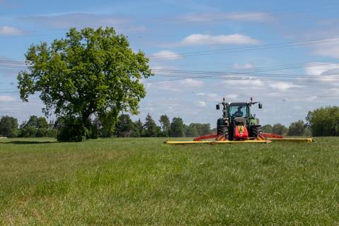 Beim Gras mähen
