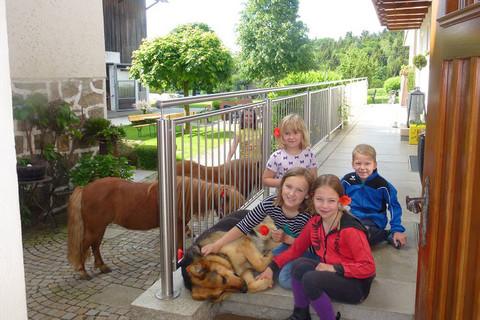 Steinhofmühle - Bauernhoferlebnisse