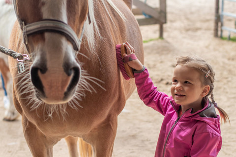 Täglich unsere Ponys putzen und Ponyreiten