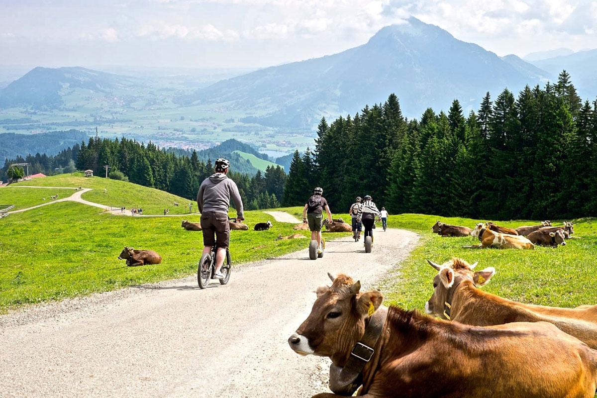 <p>© Pro Vision Media Gästeinformation Ofterschwang - Downhill Fahrt</p>