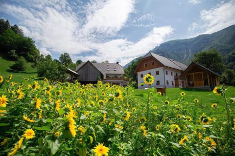 Urlaub auf der Tourist Farm Štorman