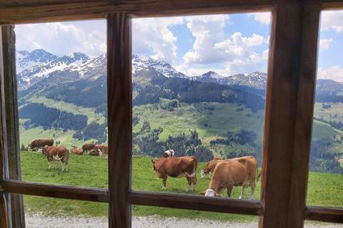 Blick aus dem Fenster - Prädastenhof