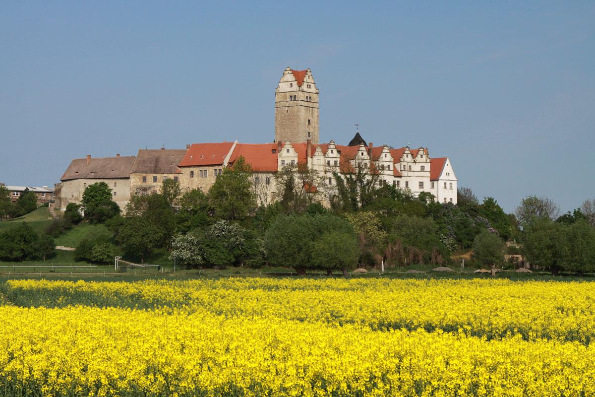 Schloss Plötzkau im östl. Sachsen-Anhalt