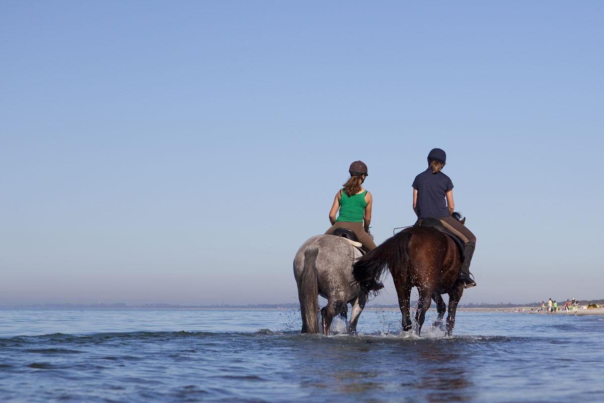 <p>Reiten am Strand von Usedom</p>