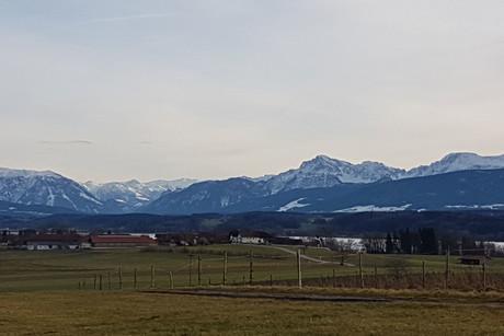 Kein-Schnee - trotzdem-schee-Angebot: Panoramahof Harmannschlag