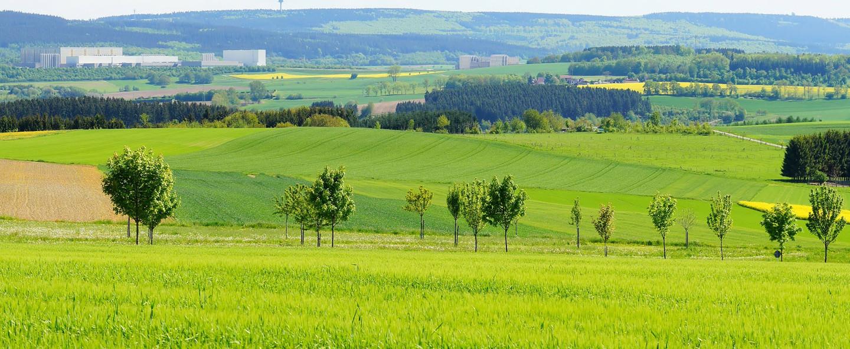 Hunsrück Panorama