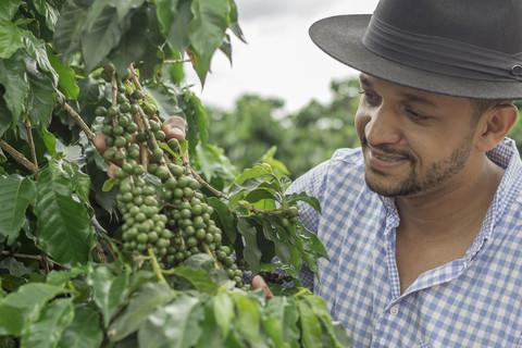 Farmer im Kaffefeld
