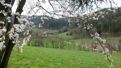 Frühling auf dem Kempfenhof mit der ganzen Familie