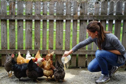 Hühner füttern am Thalerhof