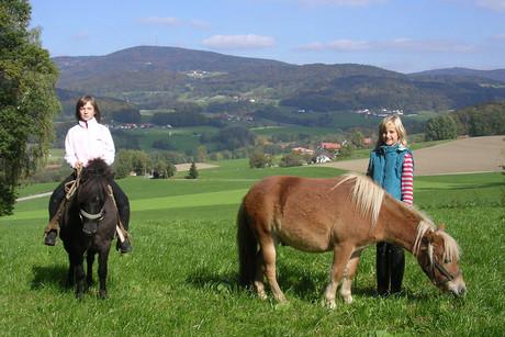 Ponyreiten am Ederhof