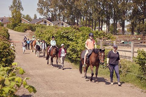 Tägliches Ponyreiten bei uns am Hof