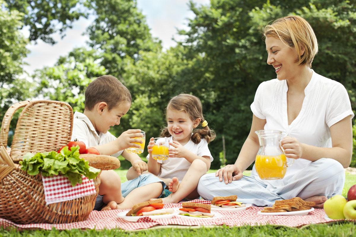 Familienpicknick in der Natur