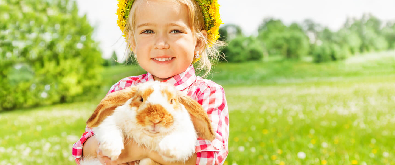 Urlaub auf dem Bauernhof im Frühling