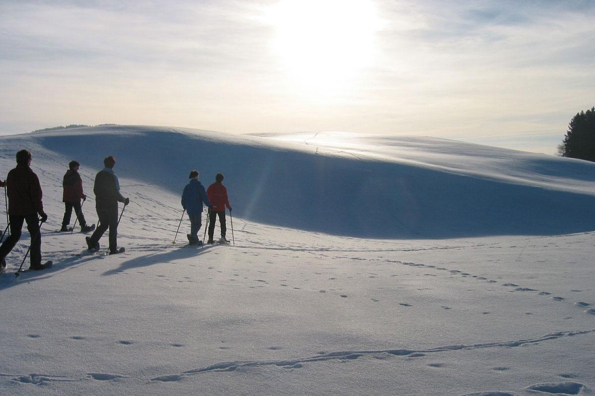 <p>© Tourist Information Roßhaupten - Schneeschuhwandern</p>