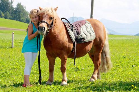 Kostenloses Ponyreiten direkt bei uns am Hof