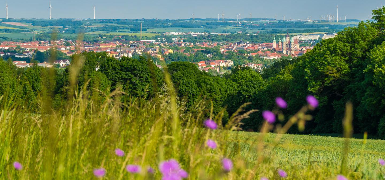 Blick auf Naumburg und Naumburger Dom im Sommer im Südlichen Sachsen-Anhalt