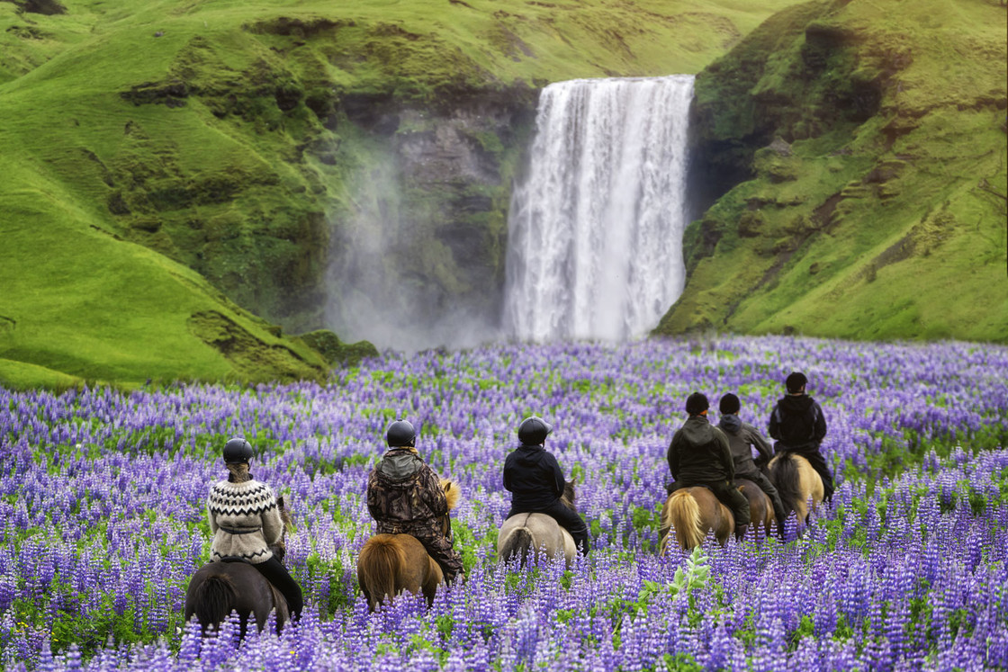 Reiter in der Kirkjufell-Berglandschaft