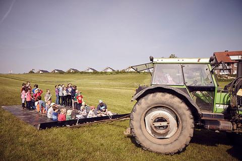 Lustige Traktor-Rundfahrt auf dem Feld