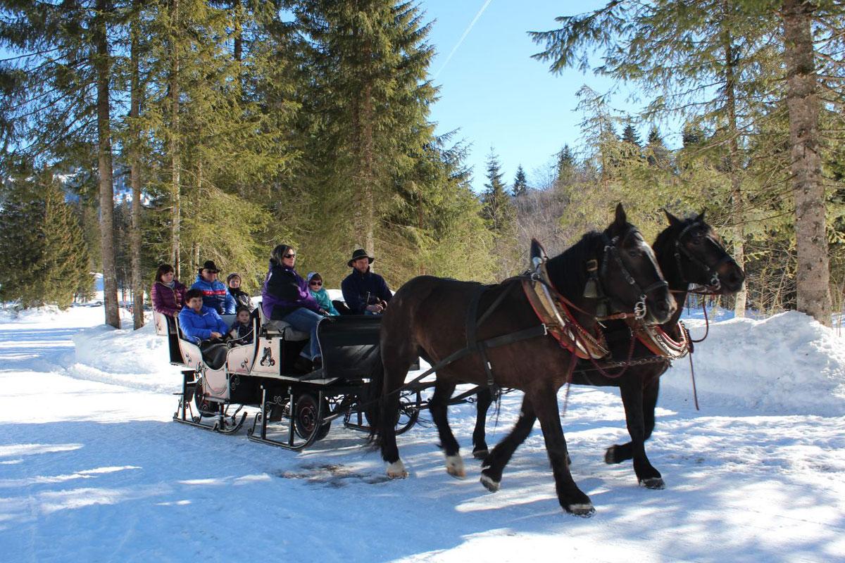 Pferdeschlittenfahrt - © Gästeinformation Balderschwang