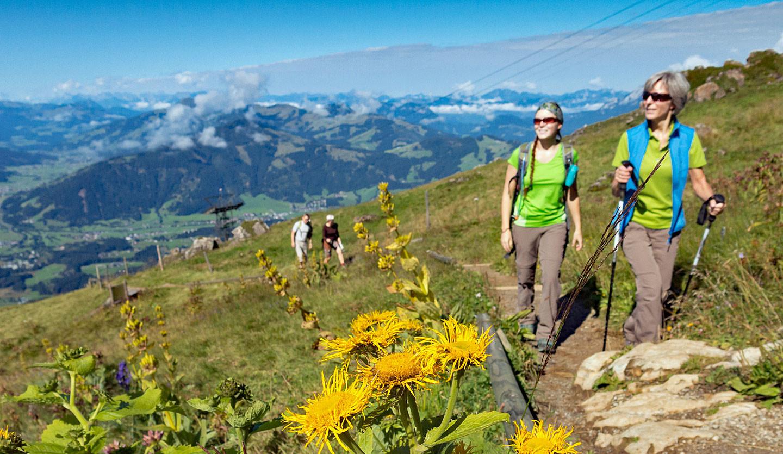 Wandern in den Kitzbüheler Alpen