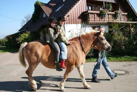 Herbst-Auszeit am Franzenhof