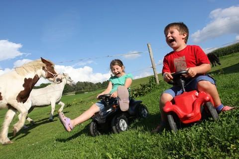 Wettfahrt mit den Ponys