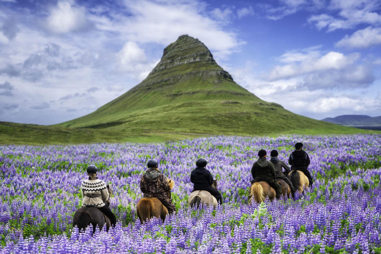 Ausritt Kirkjufell-Berglandschaft