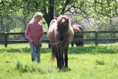 Glückliche Kinder - Ferienhof Reining