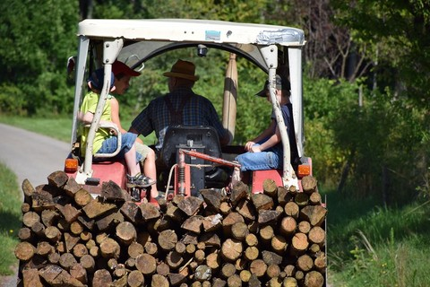 Gemeinsam Holz holen für das Lagerfeuer