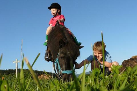 Ponyreiten direkt bei uns am Hof