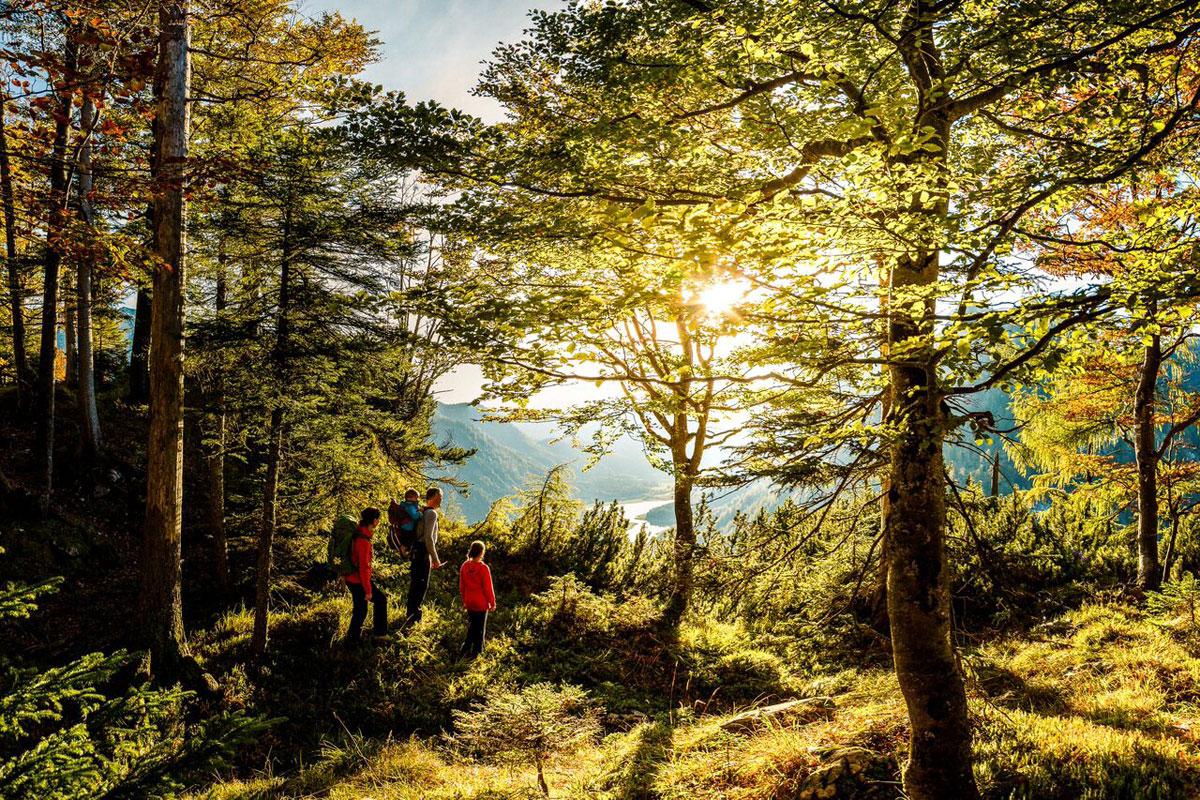 © Ruhpolding Tourismus GmbH - Wandern