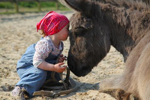 Erlebnisreicher Urlaub auf Selmas Ponyhof