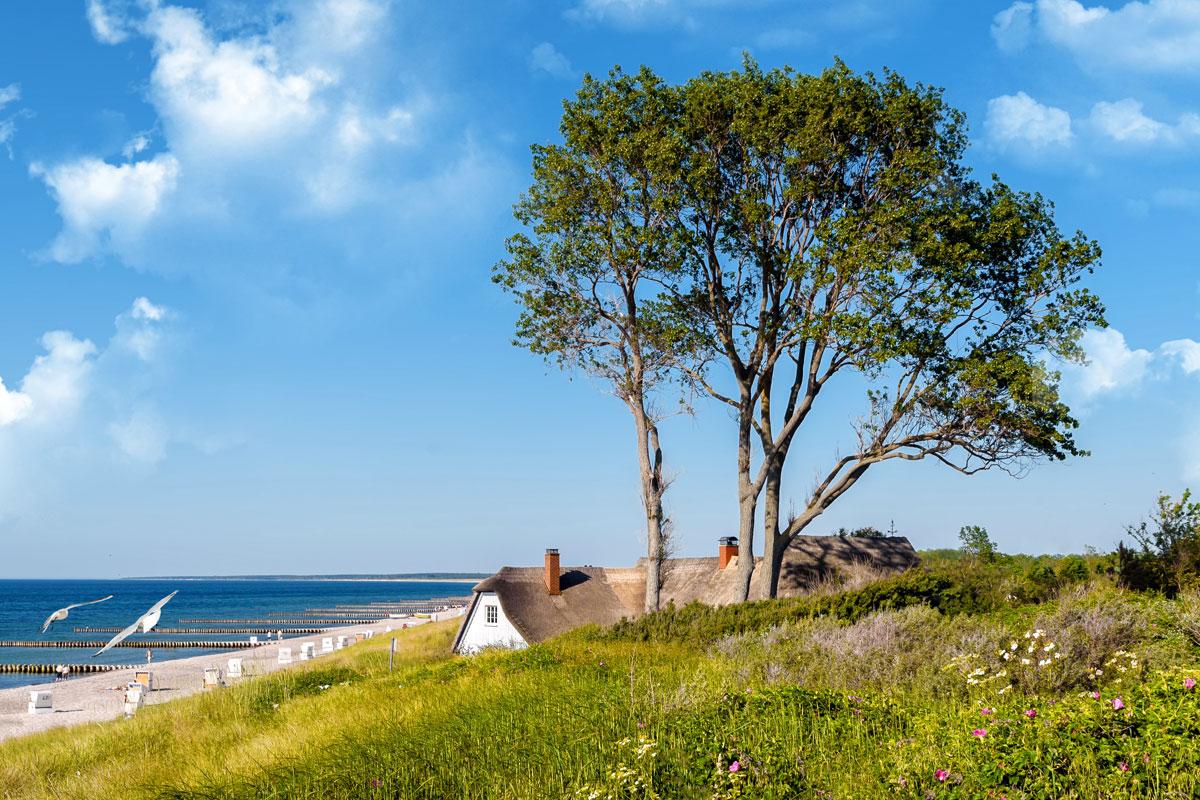 Ostseestrand bei Ahrenshoop