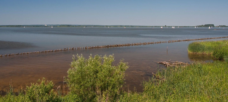 Der Dümmer See im DümmerWeserLand