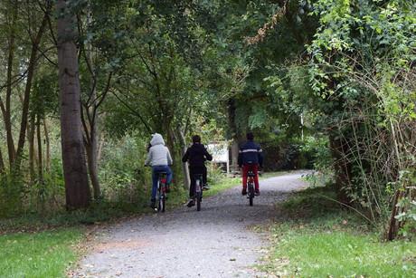 Ferien-Hof Meinerdingen - Radtour auf dem Jacobusweg
