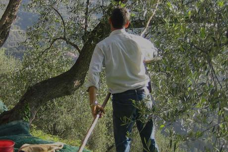 Herbstferien in Ligurien