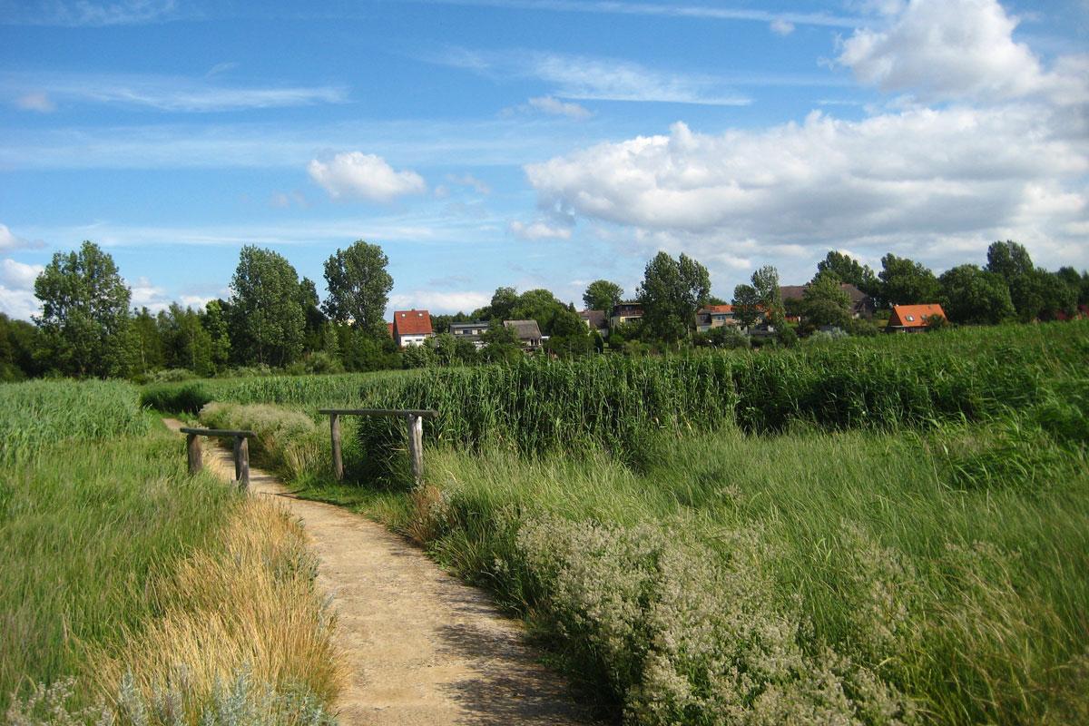 Wunderbare Landschaft in Westmecklenburg