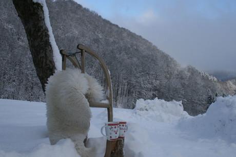 Winter-Wohlfühltage am Bernhardenhof