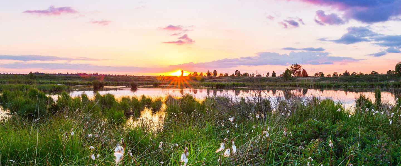 Hohes Venn Sonnenuntergang in der Nordeifel