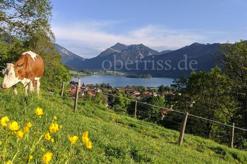 Urlaub am Oberrißhof