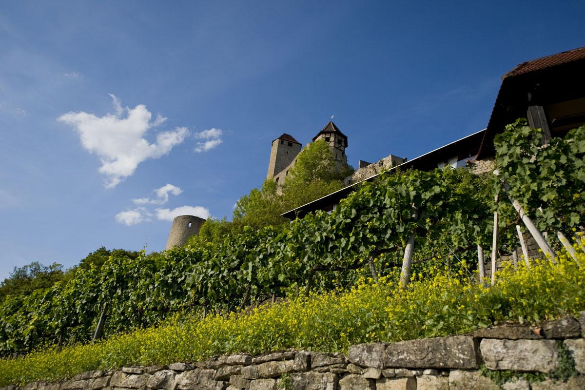 Burg Hornberg im Odenwald