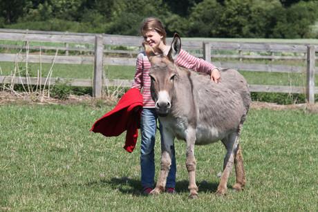 Tiere hautnah erleben - Ferienhof Reining