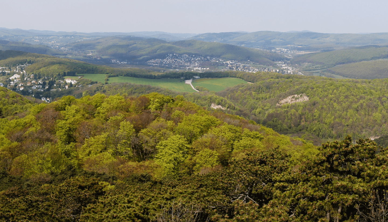 Blick über den Wienerwald